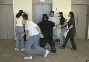 11morris_gorilla2